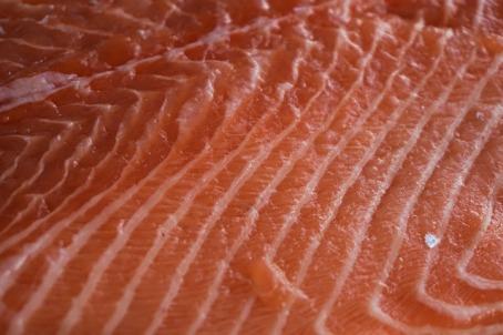 salmon-1123286_640